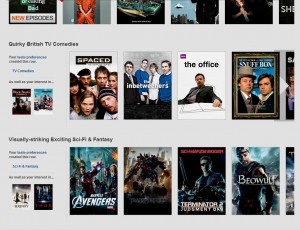 Netflix Desktop Web User Interface